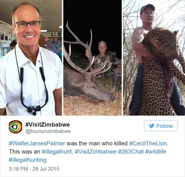 el cazador de cecil es un cazador furtivo