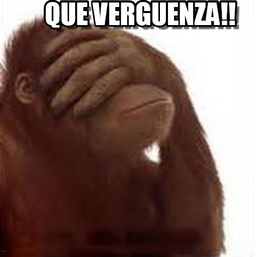 gorila diciendo que verguenza meme