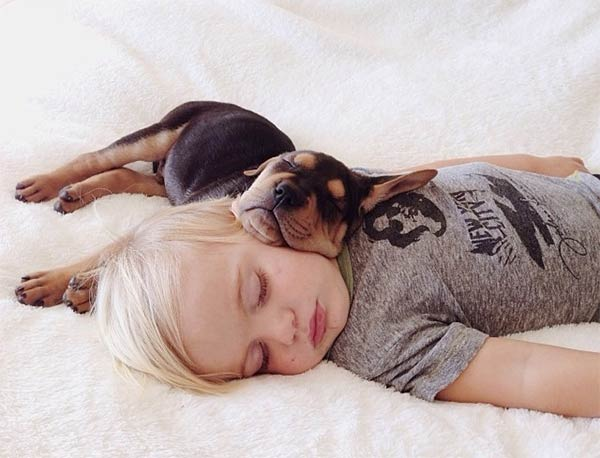 niño duerme con perrito sobre su cabeza