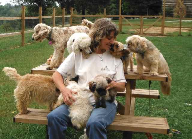 mujer con un monton de perro jugando