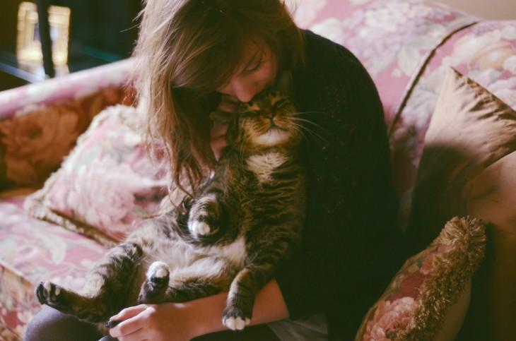 gato recibiendo amor de su dueña