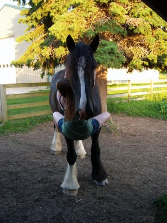 niña abrazando a caballo de una forma muy extraña