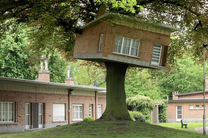 otra casa del arbol en un asilo