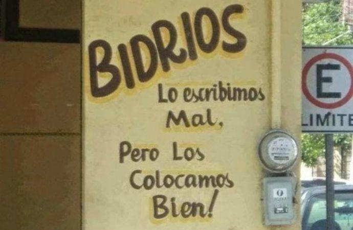 BRIDIOS COLOCADOS BIEN