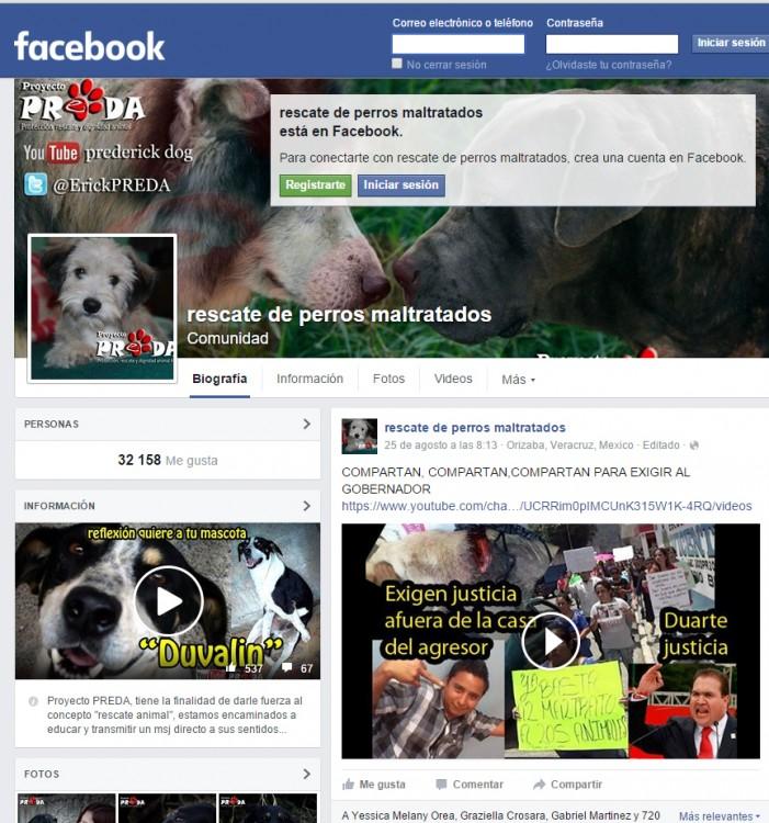 Páginas rescata perros