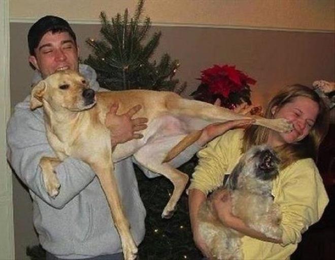 chico cargando a un perro que le da una patada en la cara a una chica