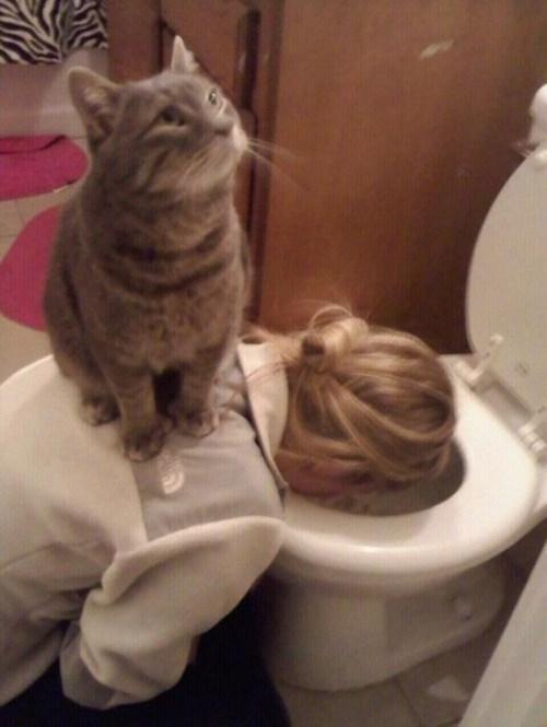 Fotografía de un gato sobre la espalda de una mujer con la cara en el innodoro