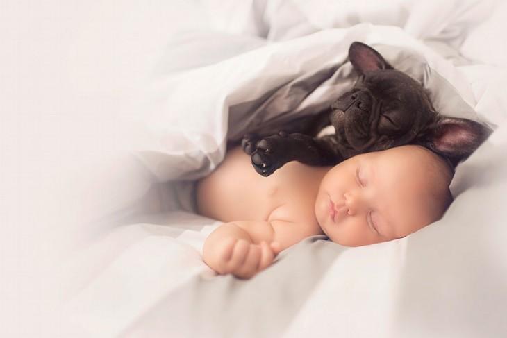 Bulldog sobre el cuerpo de un bebé dormidos en una cama