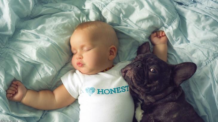 bulldog francés cuidando a un bebé que esta dormido