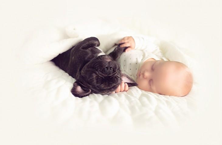 un pequeño bebé agarrando la pata  de un perro dormidos en una cama