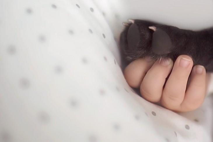 Pata de un perro sosteniendo la mano de un bebé