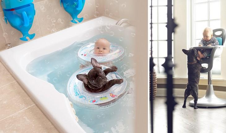 Un bebé junto a su perro dentro de la tina y en una silla a la hora de comida