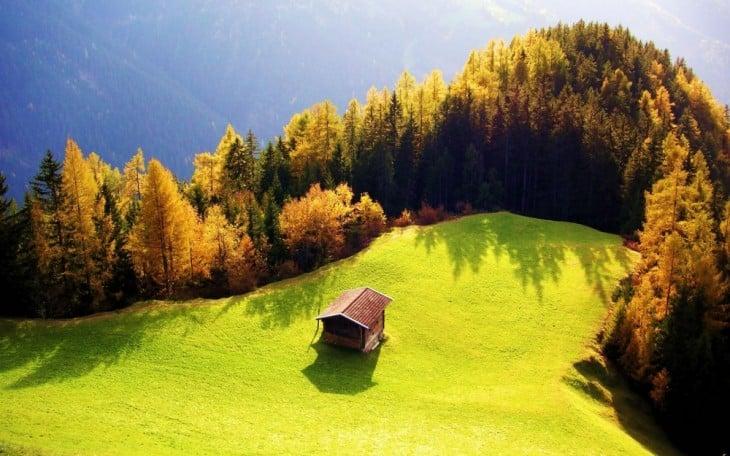 Casa ubicada cerca de un paisaje verde y rodeado de árboles