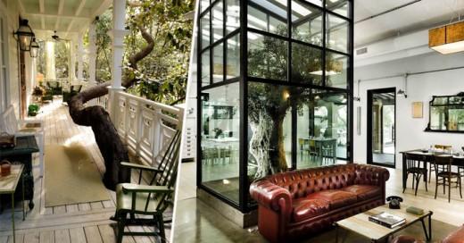 Te presentamos a 20 arquitectos que además de ser unos genios son amantes de la naturaleza. Sus diseños han llegado a salvar áreas protegidas y a árboles con más de 100 años de antigüedad, además de que las estructuras son bellísimas y se complementan con el medio ambiente.