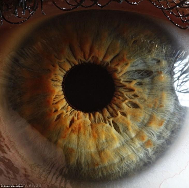 Fotografía impresionante a detalle de un ojo