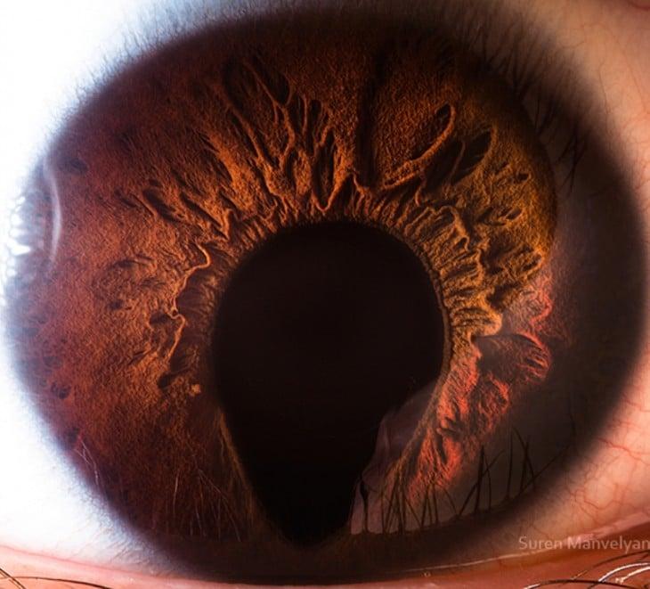 Sesión de fotos a detalle de ojos humanos