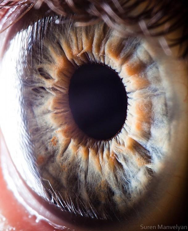 detalles de ojo por Suren Manvelyan