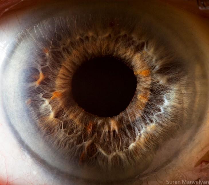 detalhe de um olho