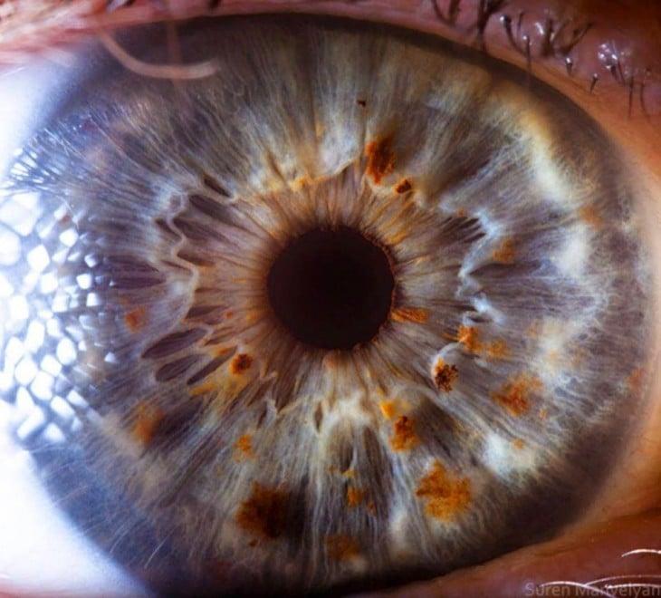 detalhe de imagem de um olho