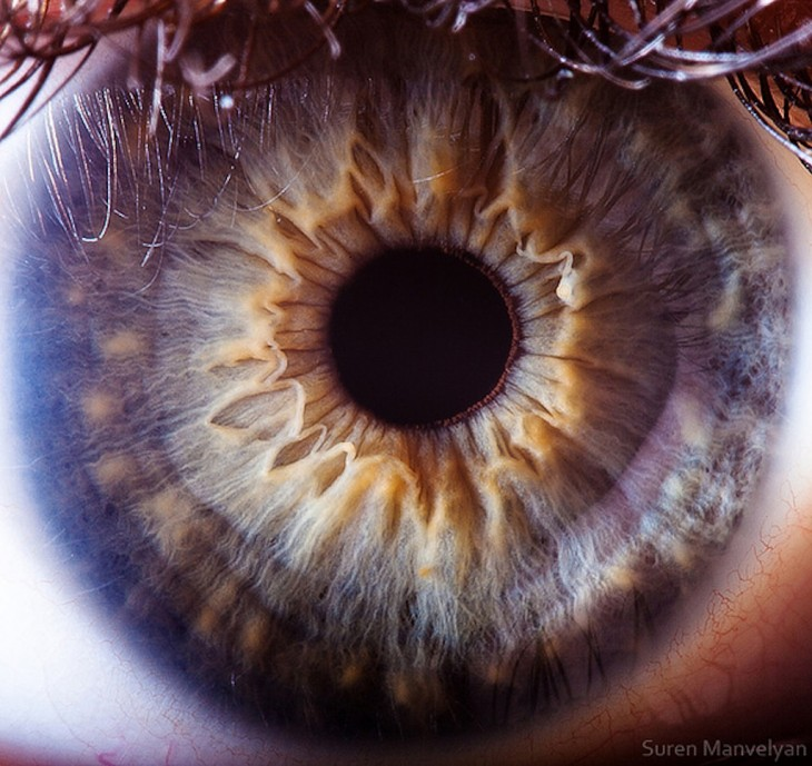 detalhes dos olhos em fotografias