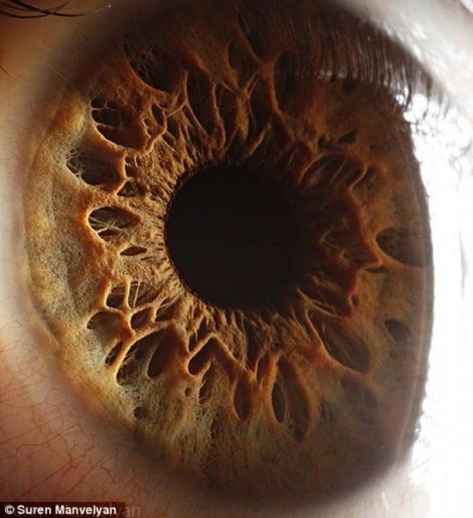 Fotografía a detalle de un ojo