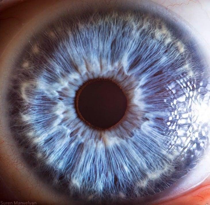 detalle de un ojo de color azul