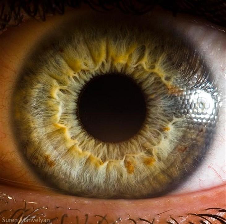 foto de un ojo humano