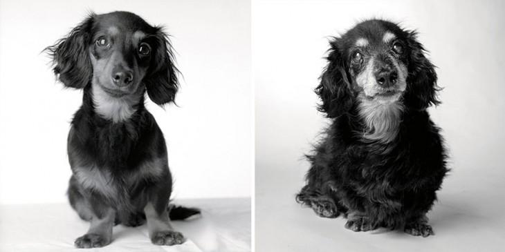 Lily: de 8 meses y 15 años