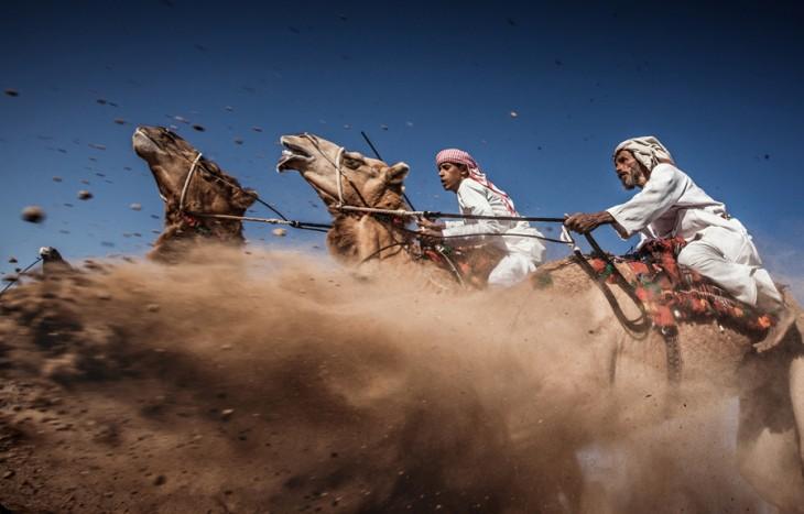 Fotografía Camel Ardah ganadora del tercer lugar en National Geographic