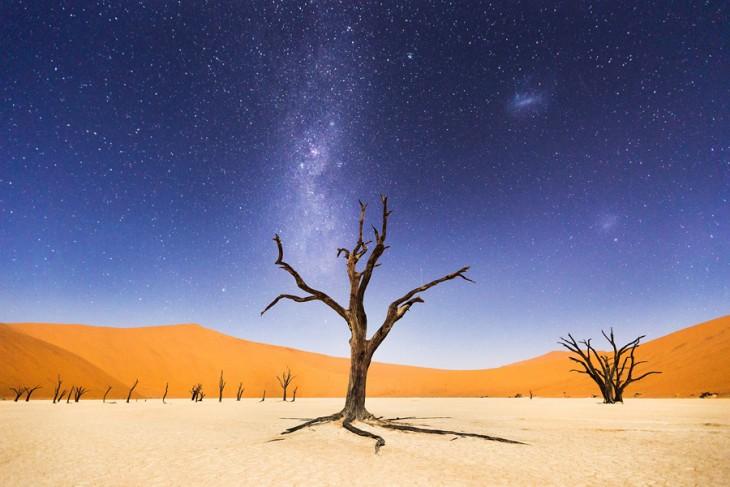 Fotografía Una noche en Deadvlei con mérito ganador en National Geographic