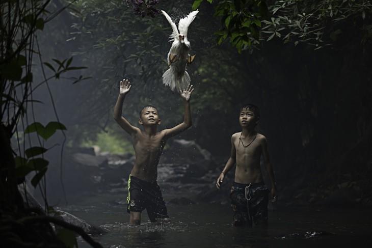 Fotografía La captura de un pato con el mérito ganador del concurso National Geographic