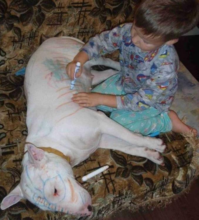 Niño dibujando con un plumón sobre un perro que esta acostado en el piso