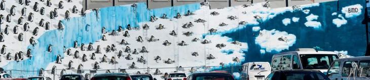 Pingüinos alrededor de los polos que se están derritiendo