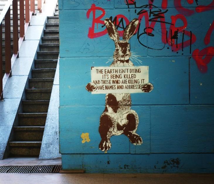 Dibujo de un conejo con un letrero en sus manos donde dice que la tierra esta siendo asesinada