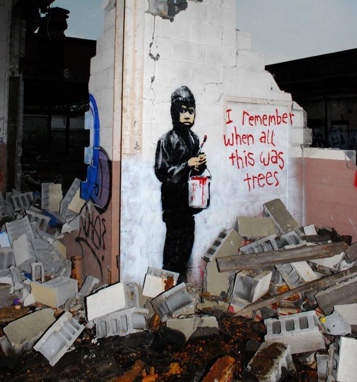 """Graffiti em uma casa abandonada onde uma criança tem a frase """"Lembro-me quando este foi árvores"""""""
