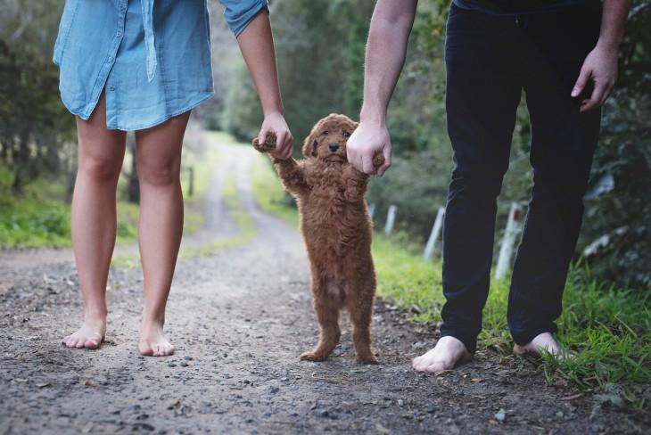 Un hombre y una mujer caminando agarrando las patas delanteras de su perro