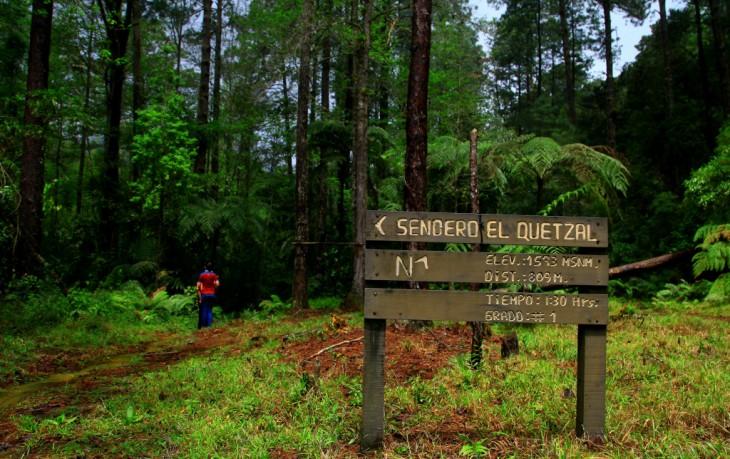 Parque Nacional Cusuco en San Pedro Sula en el norte de Honduras