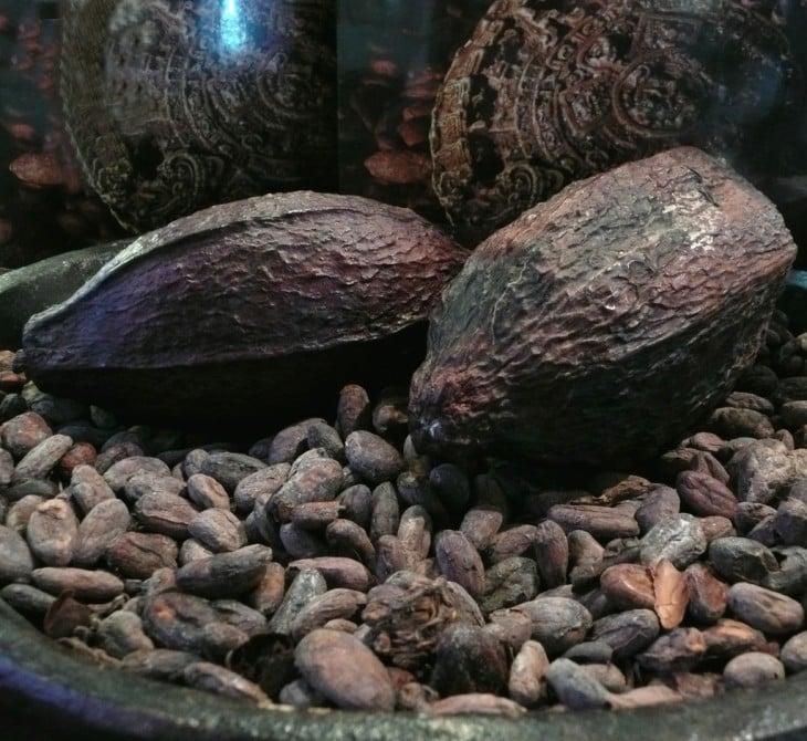 Cacao Hondureño