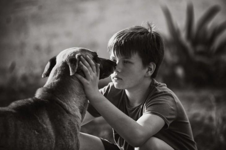 Niño acariciando la cabeza de un perro