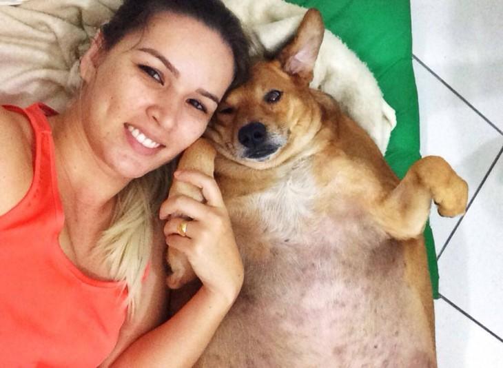 perro obeso junto a su dueña