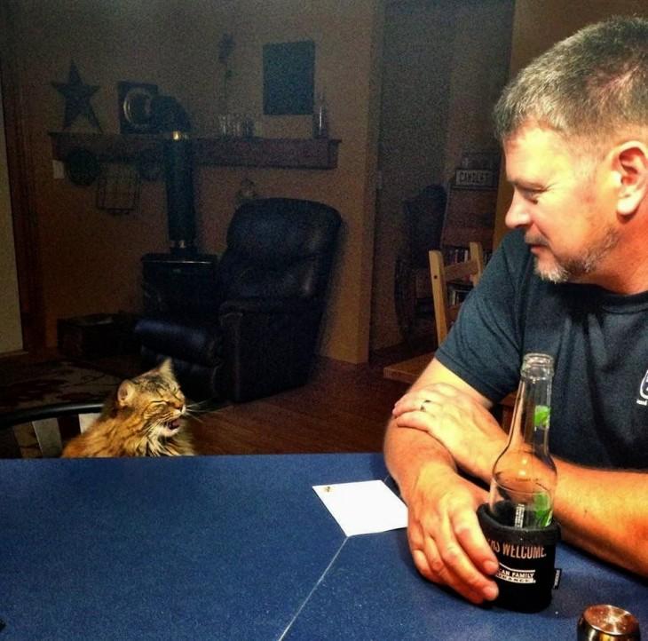 gato hacaiendo caras por tomar alcohol