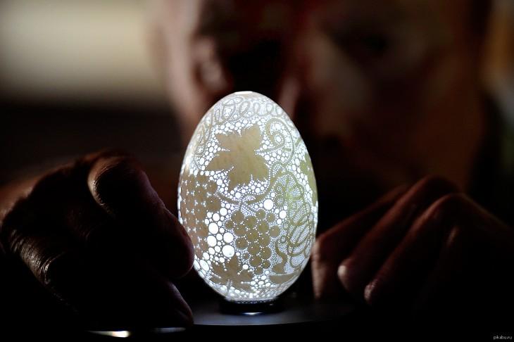cáscara de huevo con 20 mil agujeros en su superficie