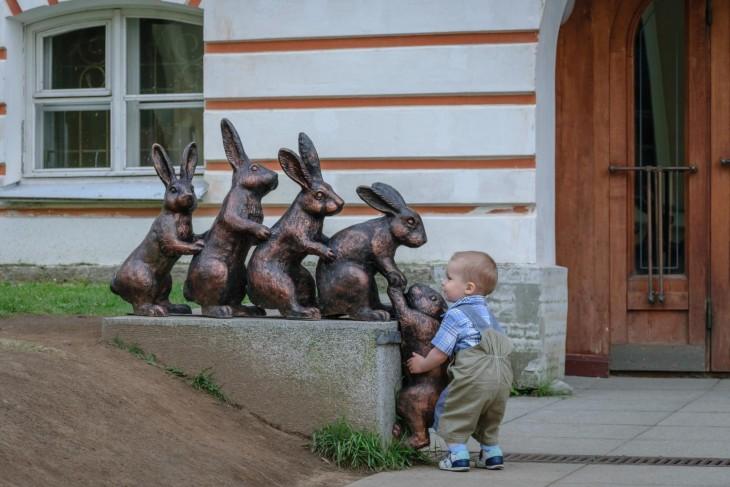 pequeño solidario con los conejitos