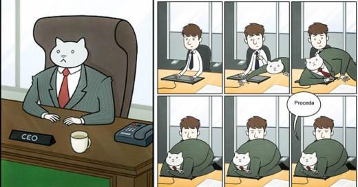 Graciosas ilustraciones que nos plantean si nuestro jefe fuese un gato... ficción o realidad?