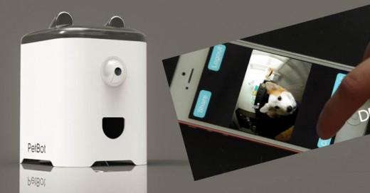 La tecnologías y Gaggets ya no solo de limitan a uso social entre humanos ahora el PtBot es una herramienta para interactuar con tu mascota de manera virtual