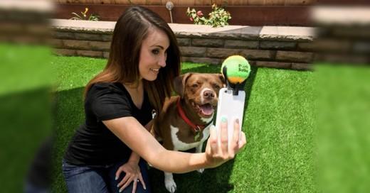 Interesantes Inventos de los amantes de sus mascotas logran hacer por ellos