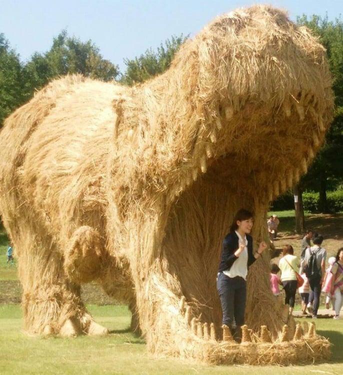 turistas japoneses se dan cita en este lugar para apreciaar el arte en niigata