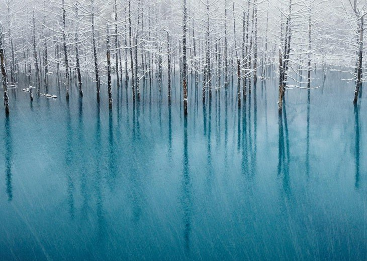 Fotografía del Estanque azul en Japón
