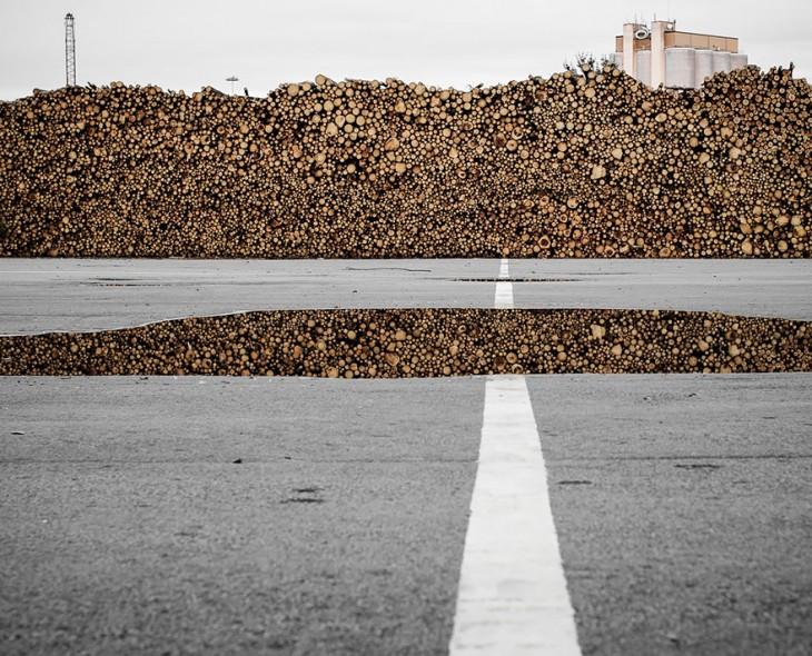 Pila de troncos de madera frente a una carretera