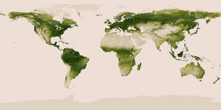 vegetacion mundial